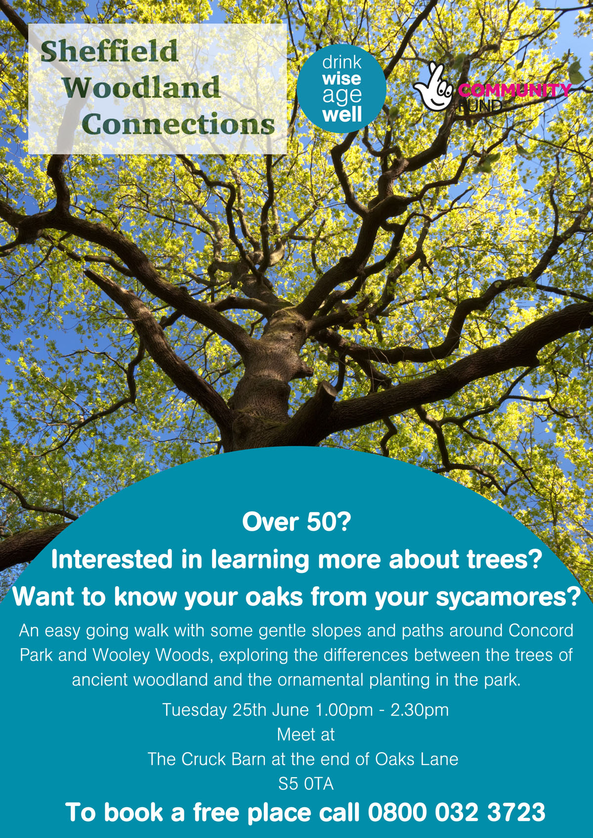 """Over 50s woodland walk at Concord Park"
