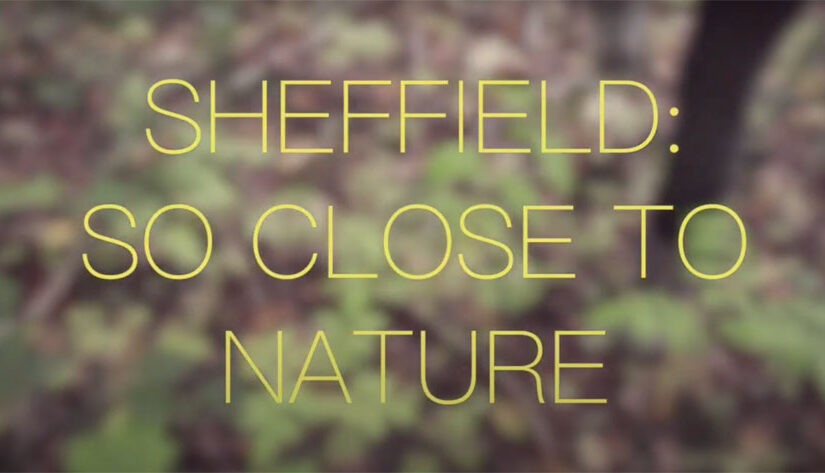 Sheffield: so close to nature